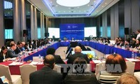 APEC 2017: Ouverture de la 2ème réunion du groupe de travail sur la santé