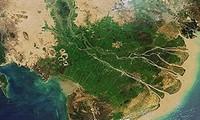Förderung des grünen Wirtschaftszweigs in der erweiterten Mekong Subregion