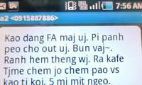 Junge Vietnamesen und die vietnamesische Sprache zur Zeit der Welteingliederung