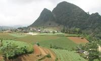 Gemeinde Sin Cheng engagiert sich für Neugestaltung ländlicher Räume
