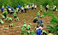 Vietnam engagiert sich für Aktivitäten gegen Klimawandel