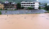 Vietnam: Vier Tote durch Taifun Rammasun
