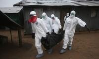 WHO: Zahl der Ebola-Opfer auf 1350 gestiegen