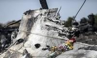MH17: Niederlande verweigern Veröffentlichung der Unterlagen