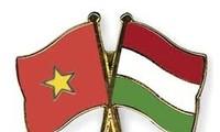 Vietnamesisch-ungarische Freundschaftsgesellschaft erhält Arbeitsorden