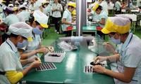 Vietnam wird das Silicon Valley in Südostasien