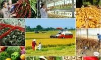Verordnung der Regierung zur Umstrukturierung des Landwirtschaftszweigs