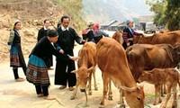Projekte zur Armutsminderung