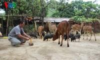 Positive Änderungen in der Gemeinde Muong Hung der Provinz Son La