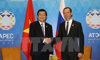 Staatspräsident Truong Tan Sang trifft Russlands Premierminister Dimitri Medwedew