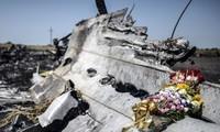 MH17: Russland bestellt Botschafterin der Niederlande ein