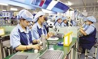Vietnam setzt sich für ein günstiges Handelsumfeld ein