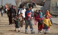 Irak: Fast 42.000 Menschen seit Beginn der Mossul-Offensive geflohen