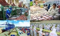 Wirtschaftsexperten: Wirtschaft Vietnams wächst stabil
