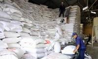 2000 Tonnen Reis für Einwohner in der Provinz Binh Dinh zur Verfügung gestellt