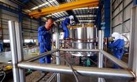 Unternehmen mit Auslandsdirektinvestitionen führen gutes Geschäft in Hai Phong