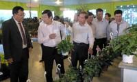 Presiden Vietnam, Truong Tan Sang mengapresiasi pola pertanian teknologi tinggi di provinsi Lam Dong