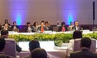 Konferensi para pejabat senior ASEAN (SOM)