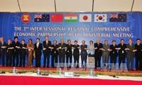 Mendorong  sirkulasi perdagangan komoditas, jasa dan investasi dalam kawasan RCEP