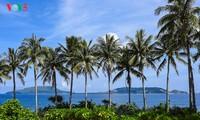 """""""Museum"""" geologi gunung berapi purba yang jarang ada di dunia di Pulau Ly Son"""