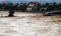 Hujan dan banjir di beberapa daerah di Vietnam menimbulkan kerugian besar tentang manusia dan harta
