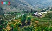 Sawah terasering Ha Giang pada musim memuntahkan air