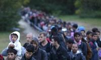 EU starts returning refugees to Greece