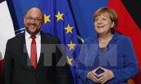 Germany's Social Democrats agree to open talks with Merkel
