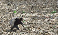 World Environment Day: UN calls for reducing use of plastic bags