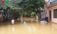 3 người chết, 1 người mất tích do bão Dianmu (Bão số 3)