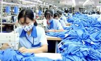 Năm 2016: Xuất khẩu của Việt Nam sang các nước liên minh kinh tế Á -Âu đạt 2,7 tỷ USD