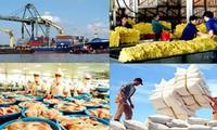 Xuất khẩu bền vững: hướng tới giá trị gia tăng cao hơn