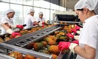 Ngân hàng thế giới đánh giá triển vọng kinh tế trung hạn của Việt Nam vẫn tích cực