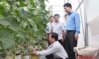 Sản xuất nông nghiệp hữu cơ - hướng phát triển tất yếu và bền vững