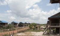 Doanh nghiệp cao su Việt Nam đóng góp vào sự phát triển kinh tế của Campuchia