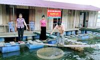 Mô hình Hợp tác xã trong xây dựng Nông thôn mới ở Sơn La