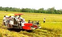 Hàn Quốc chia sẻ công nghệ trong sản xuất nông nghiệp với Việt Nam