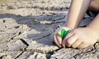 Sửa đổi Khung Chương trình Hỗ trợ ứng phó với biến đổi khí hậu