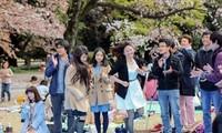 Nhật Bản nới lỏng quy định visa cho du khách Việt Nam