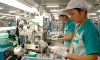Tăng cường hợp tác đầu tư kinh doanh giữa Việt Nam và Nhật Bản