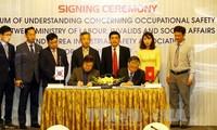 Việt Nam - Hàn Quốc tăng cường phối hợp trong lĩnh vực an toàn vệ sinh lao động