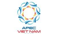 Nghệ nhân làng đá Non Nước thực hiện tác phẩm đại diện cho Việt Nam tại Vườn tượng APEC