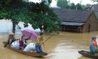 Hỗ trợ lương thực cho người dân vùng bị bão lũ