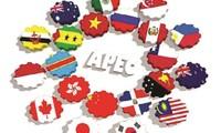 APEC Year 2017: Vietnam promotes international integration