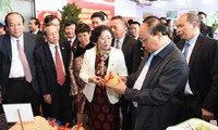Solution to Vietnam's agricultural development
