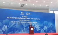 25th APEC Economic Leaders' Meeting approves Da Nang declaration