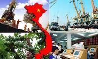 2018, pivotal year for Vietnam's international integration