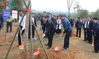 President launches tree planting festival