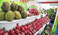 越南水果出口猛增