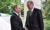 普京:俄土关系将恢复且不断发展